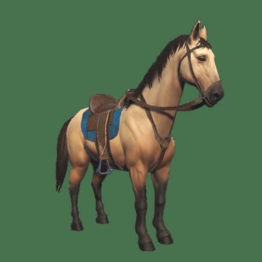 Pre kone
