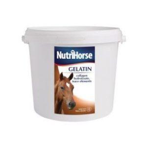 Gelatin - pre zdravý rasť chrupaviek a kĺbov
