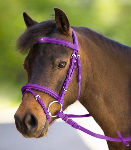 uzdečka pre pony, shetty, minishetty